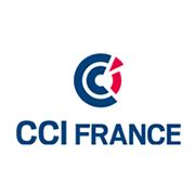 Logo CCI France Vignette