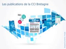 Les publications de la CCI Bretagne